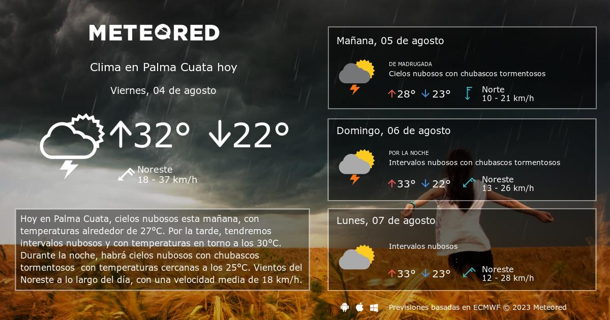 Clima En Palma Cuata El Tiempo A 14 Días Meteoredmx